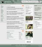 Skärmdump Voodoo Film 2004-09-29
