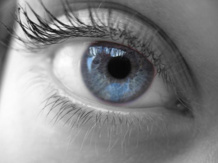 Nya rön visar att ögat kan se 75 bilder per sekund