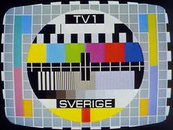 Felaktigt att tv-avgiften ska försvinna